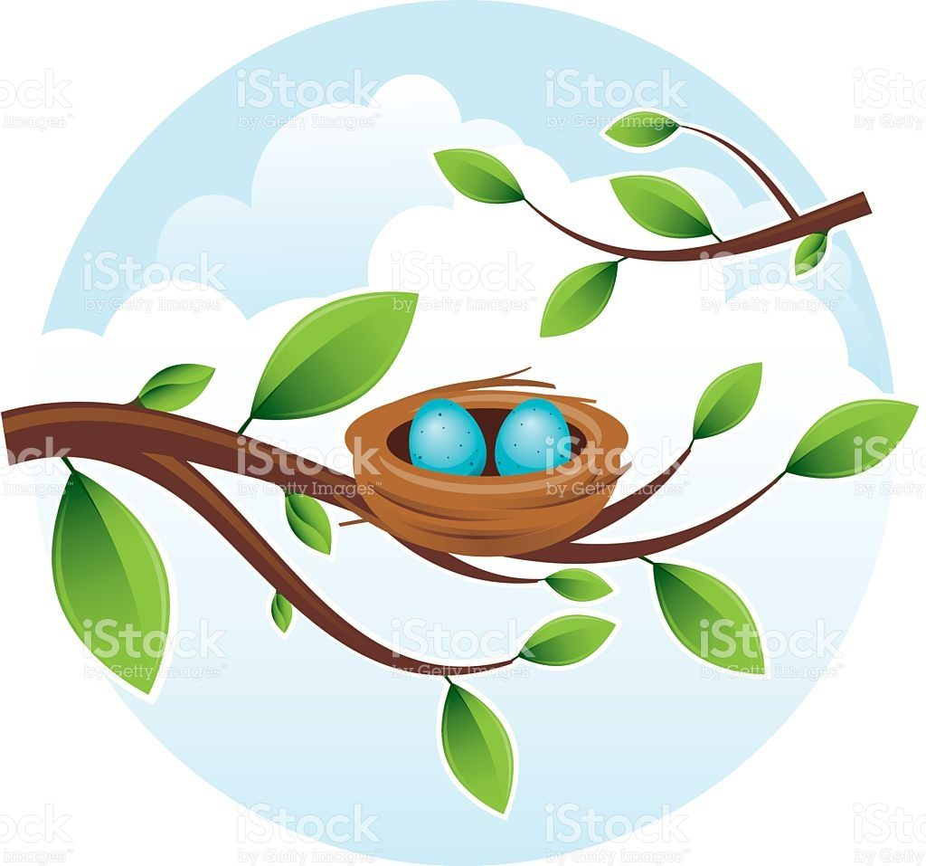 1024x957 Stylish Design Nest Clipart Bird Clip Art Vector Images
