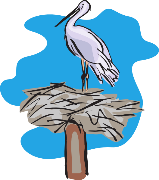 528x598 Bird Standing On Nest Clip Art