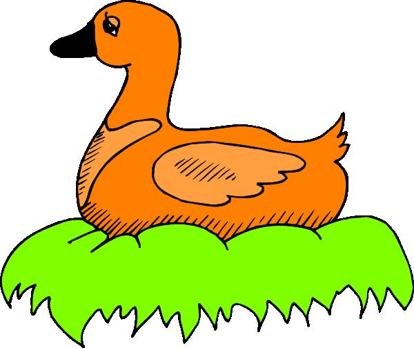 600x504 Duck Nest Clipart