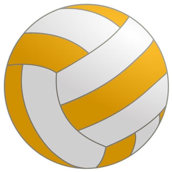 600x600 Ball Clipart Netball Ball