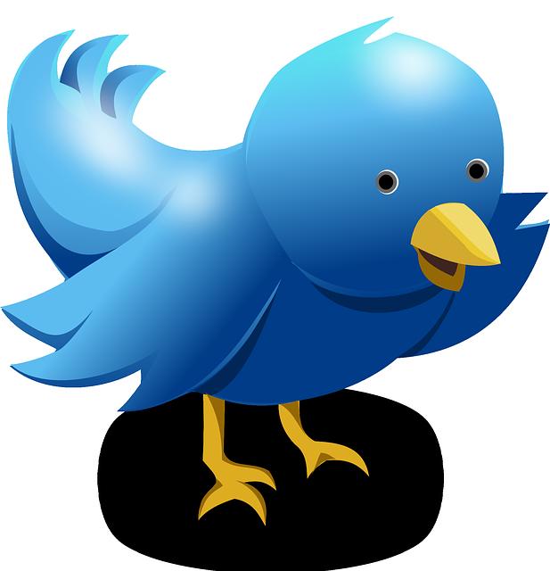 617x640 Free Photo Social Network Media Networking Icon Social Media