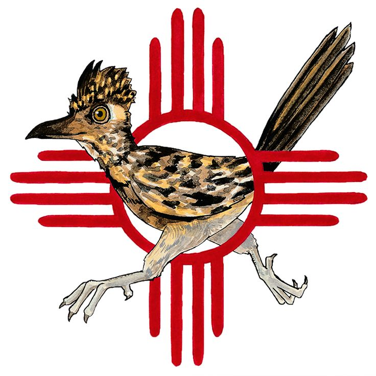 736x736 Roadrunner Clipart New Mexico