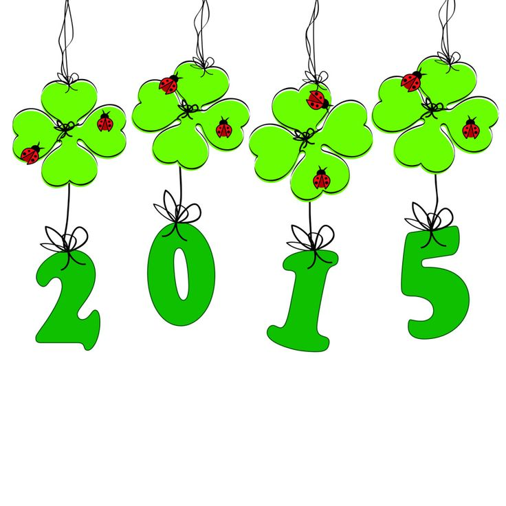 736x736 274 Best Celebrate The New Year 2016 Images Abs