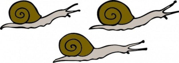 626x220 Snails Clip Art. Previous Next Clipart Panda