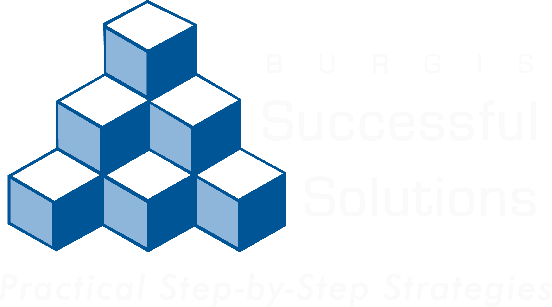 2295x1278 Take The Next Step Burgis Successful Solutions
