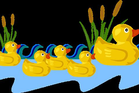 480x320 Nice Weather For Ducks