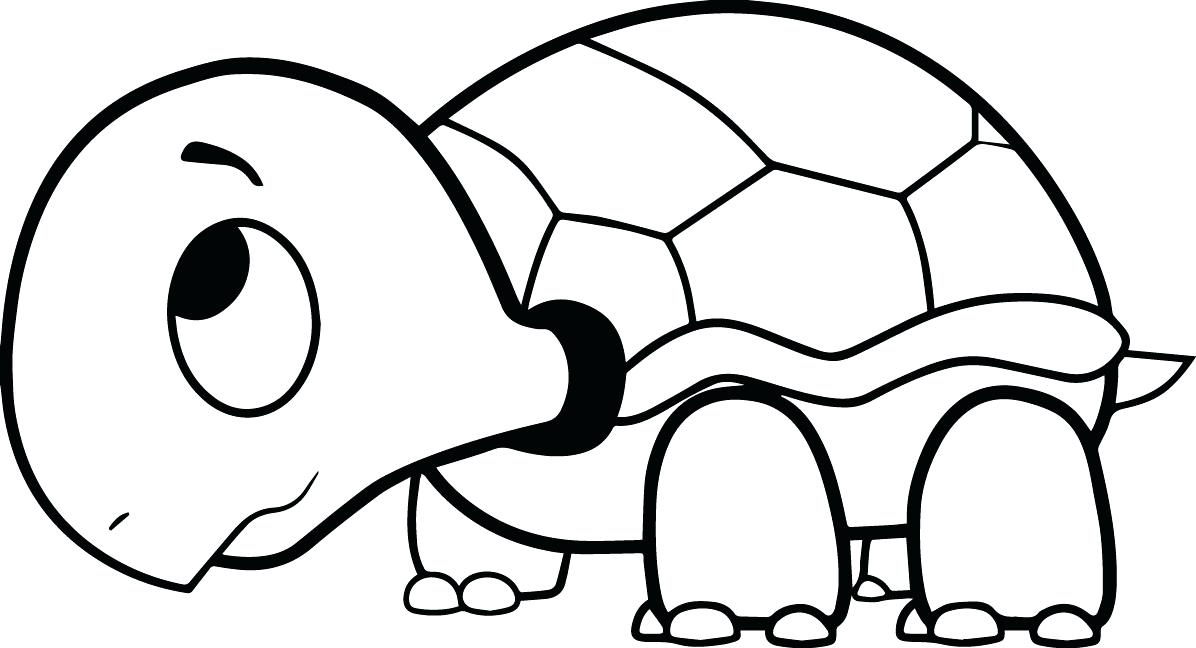 1196x648 Remarkable Extraordinary Ninja Turtle Coloring Page Image Kids