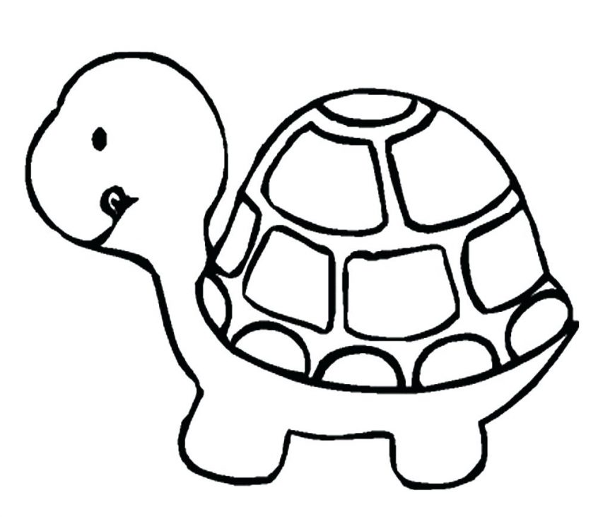 863x731 Beautiful Turtle Coloring Page On Free Colouring Pages With Ninja