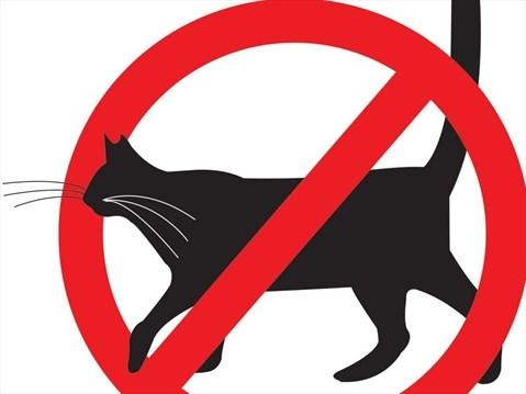 479x359 Opinion No Pets Allowed