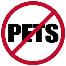 225x225 Clipart I Have No Pets