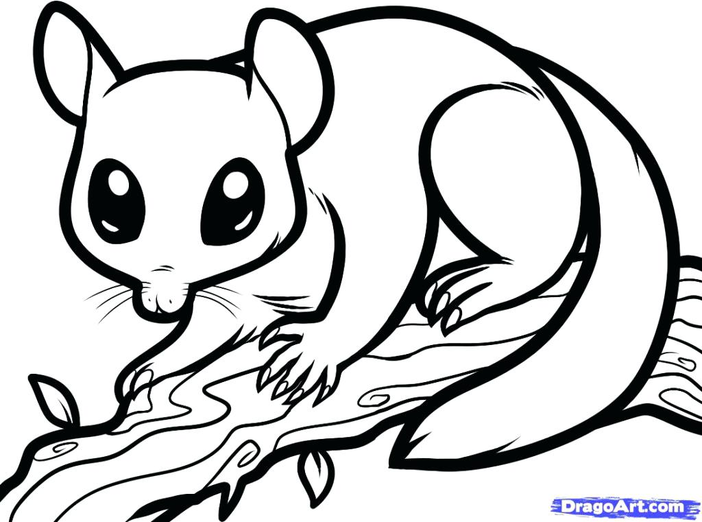 1024x761 Brilliant Various Nocturnal Animal Colouring Sheets Print Coloring