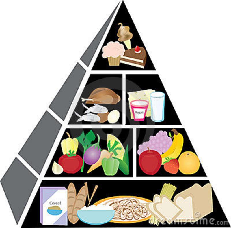 800x792 Clipart Of Food Pyramid 101 Clip Art