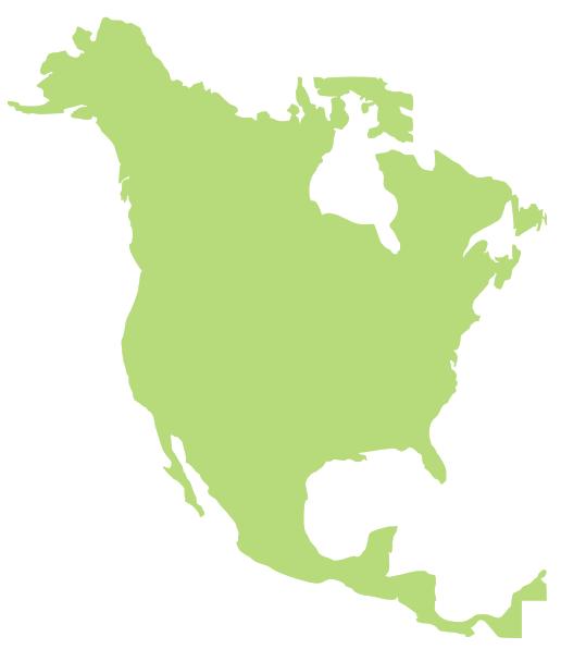 516x596 North America Clip Art