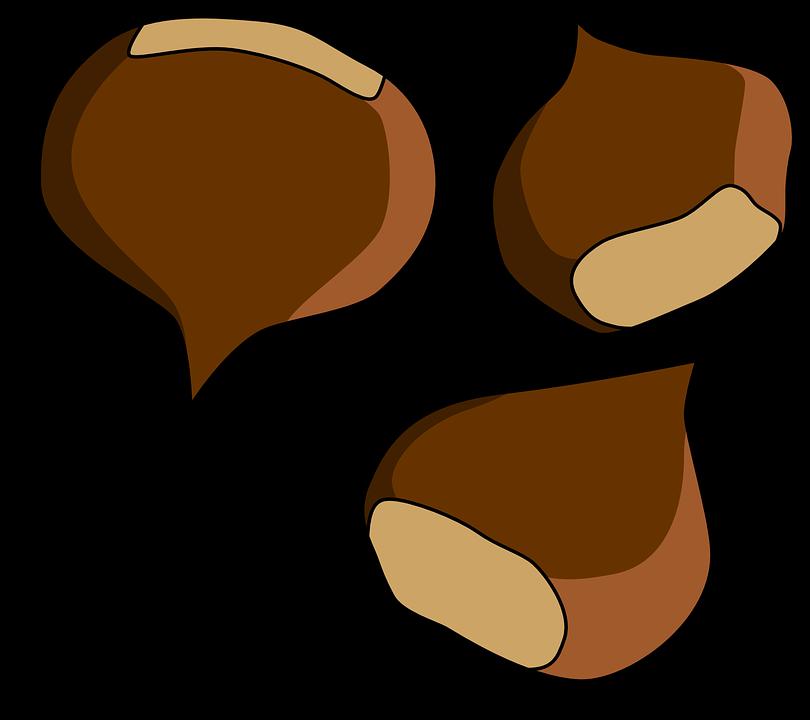 810x720 Nut Clipart Conker