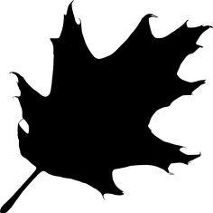 236x235 Oak Leaf Pattern. Use The Printable Outline For Crafts, Creating