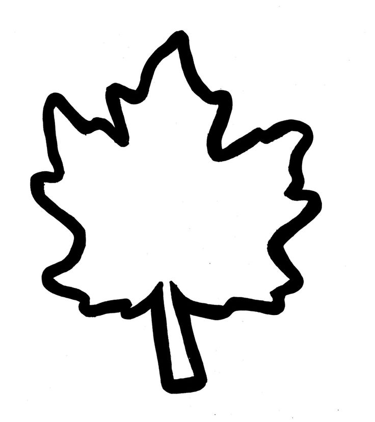 Oak leaf outline free download best oak leaf outline on clipartmag 736x828 best photos of oak leaf pattern template maxwellsz