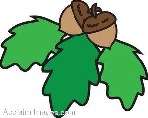 Oak Leaf Pictures