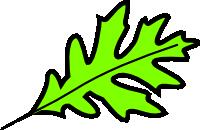 200x130 Oak Leaves Clip Art