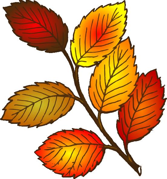 552x594 Fall Leaves Yellow Oak Leaf Clipart Fall