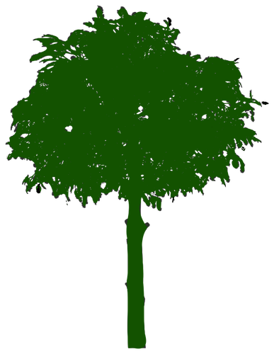 Oak Tree Silhouette Clipart