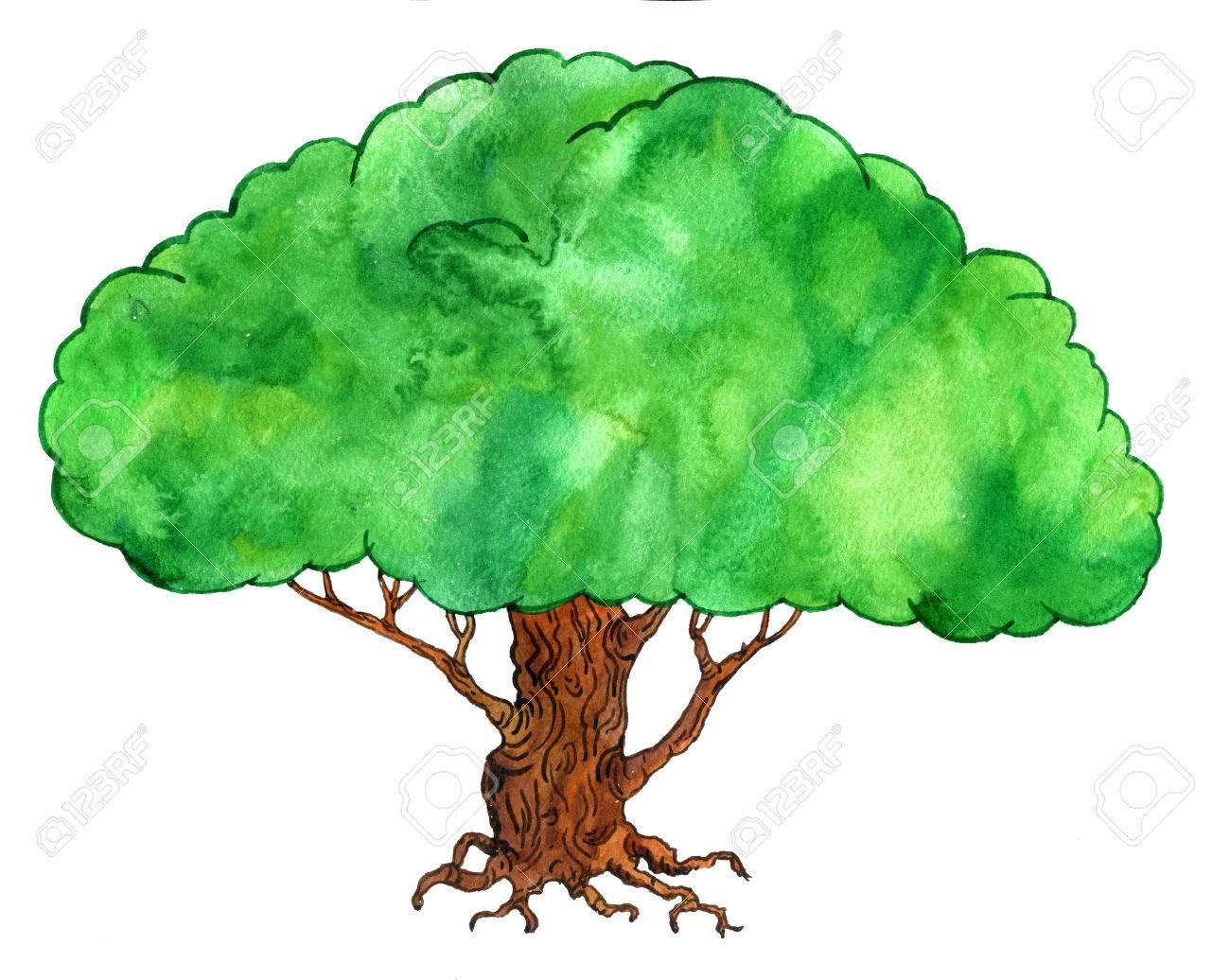 Oak Trees Clipart | Free download best Oak Trees Clipart on ...