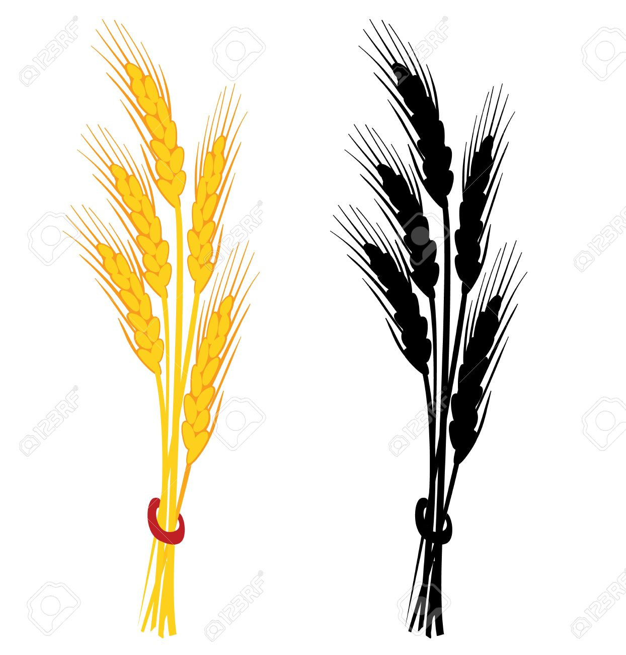 1244x1300 Grain Clipart Oats