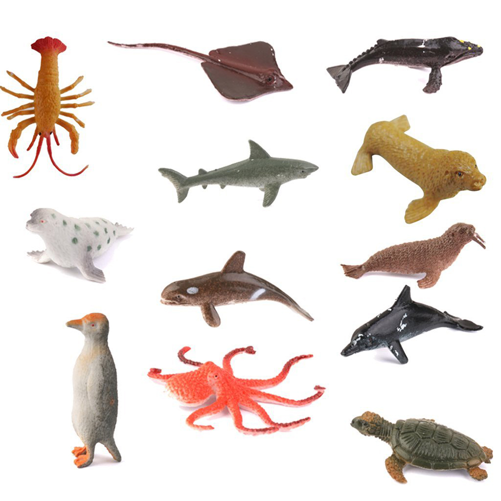 Ocean Animals Images
