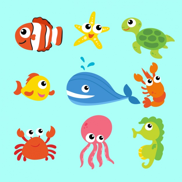 626x626 Sea Animals Collection Vector Free Download