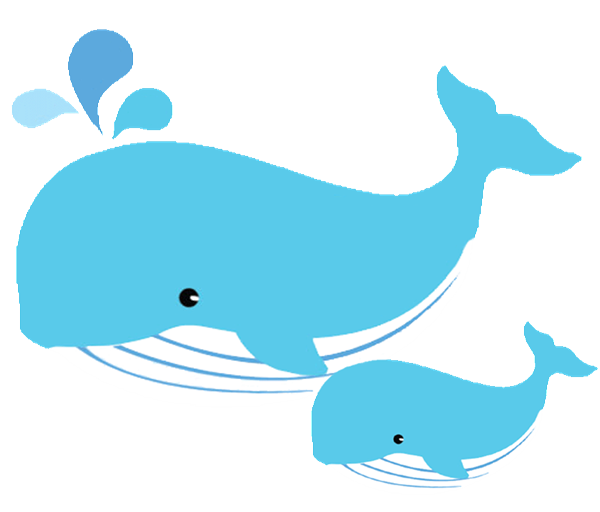 600x512 Free Dolphin And Whale Graphics Ocean Clipart