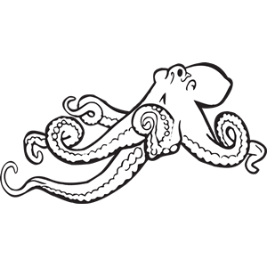 300x300 Octopus Black And White Cliparts Red Octopus Clipart