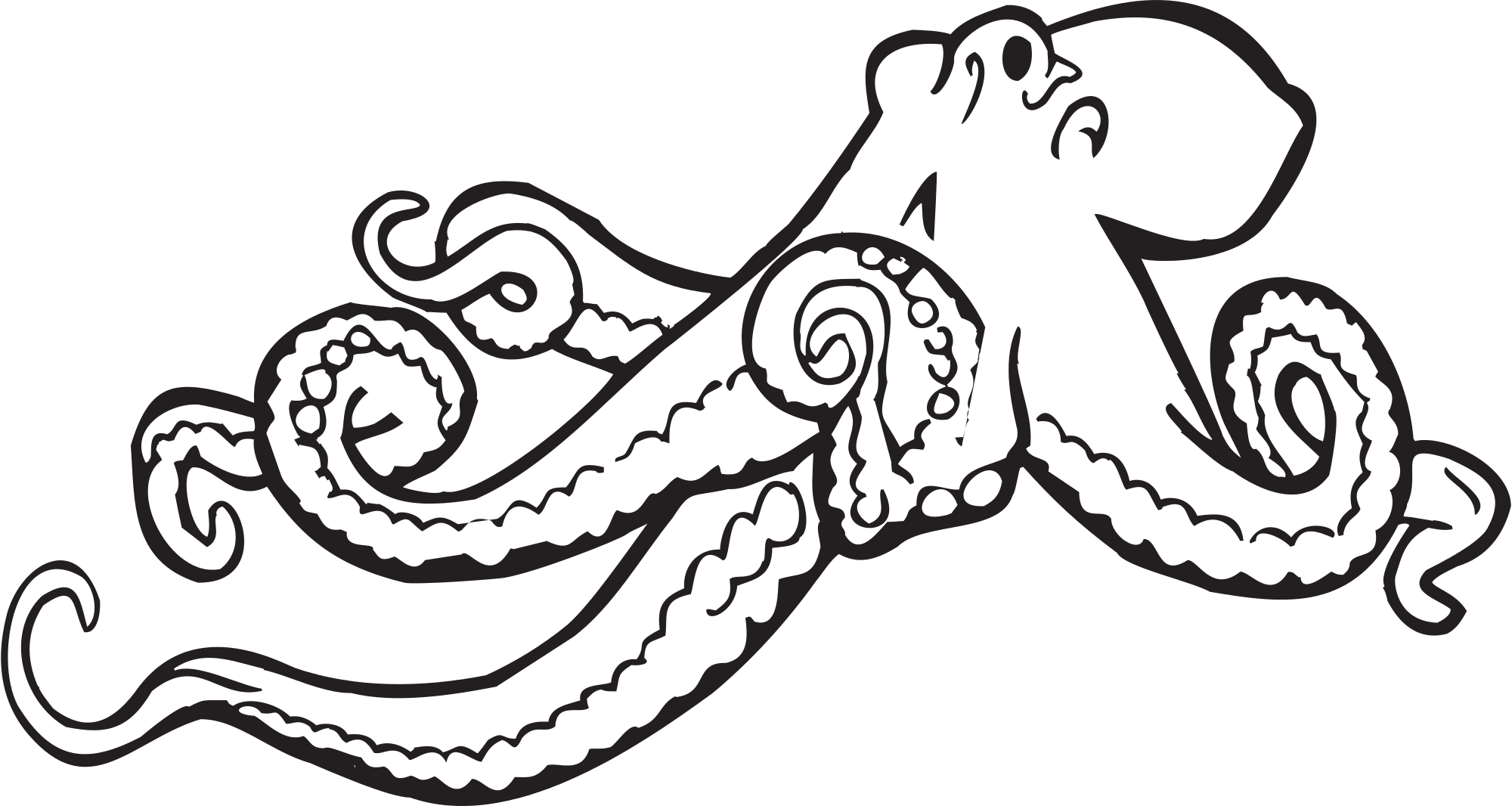 2000x1066 Octopus Clipart Illustrations 2 Octopus Clip Art Vector Image 2