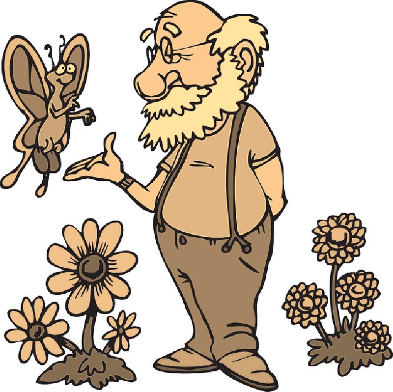 800x798 Old, Man, Flowers, Cartoon, Butterfly, Beard, Flower