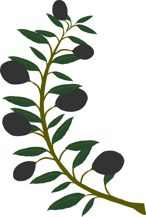 512x762 Olive Branch Black Olive Clipart