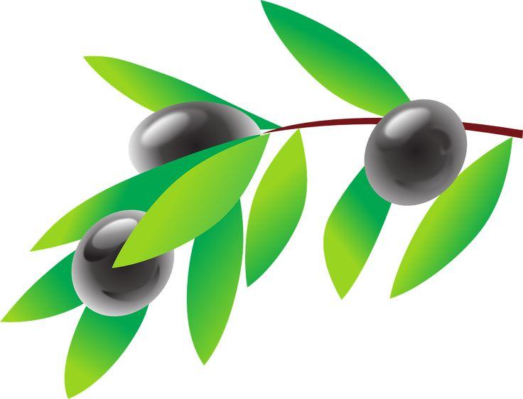 Olive Leaf Clipart