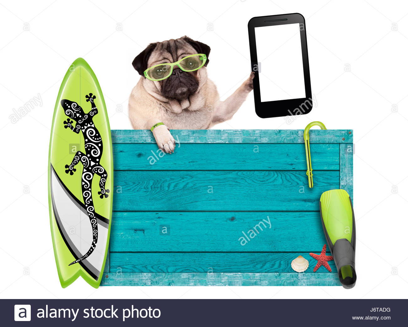 1300x1041 Pug Dog On Vacation With Blue Vintage Wooden Beach Sign, Surfboard