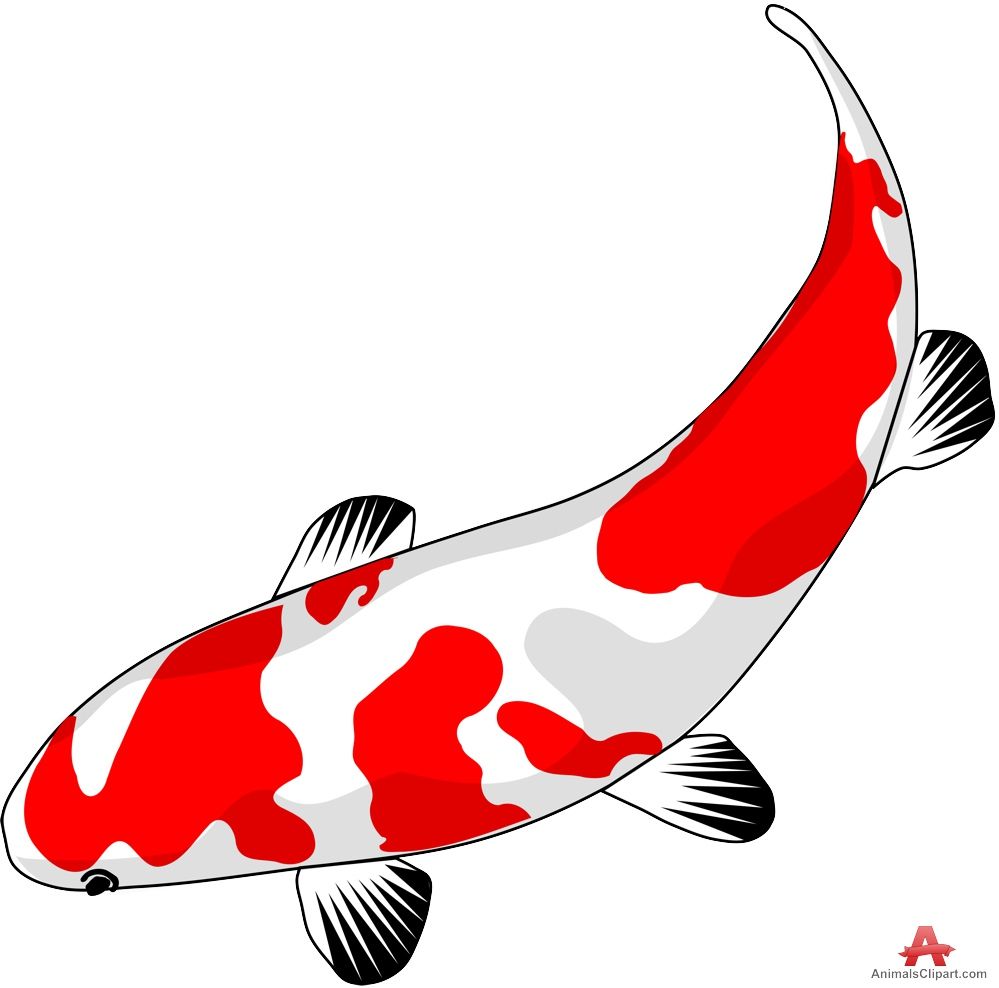 999x988 Koi Fish Clipart Many Interesting Cliparts