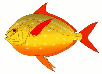 340x247 Red Fish Clipart