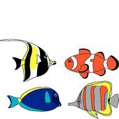 170x170 Tropical Fish Clipart Red And Blue