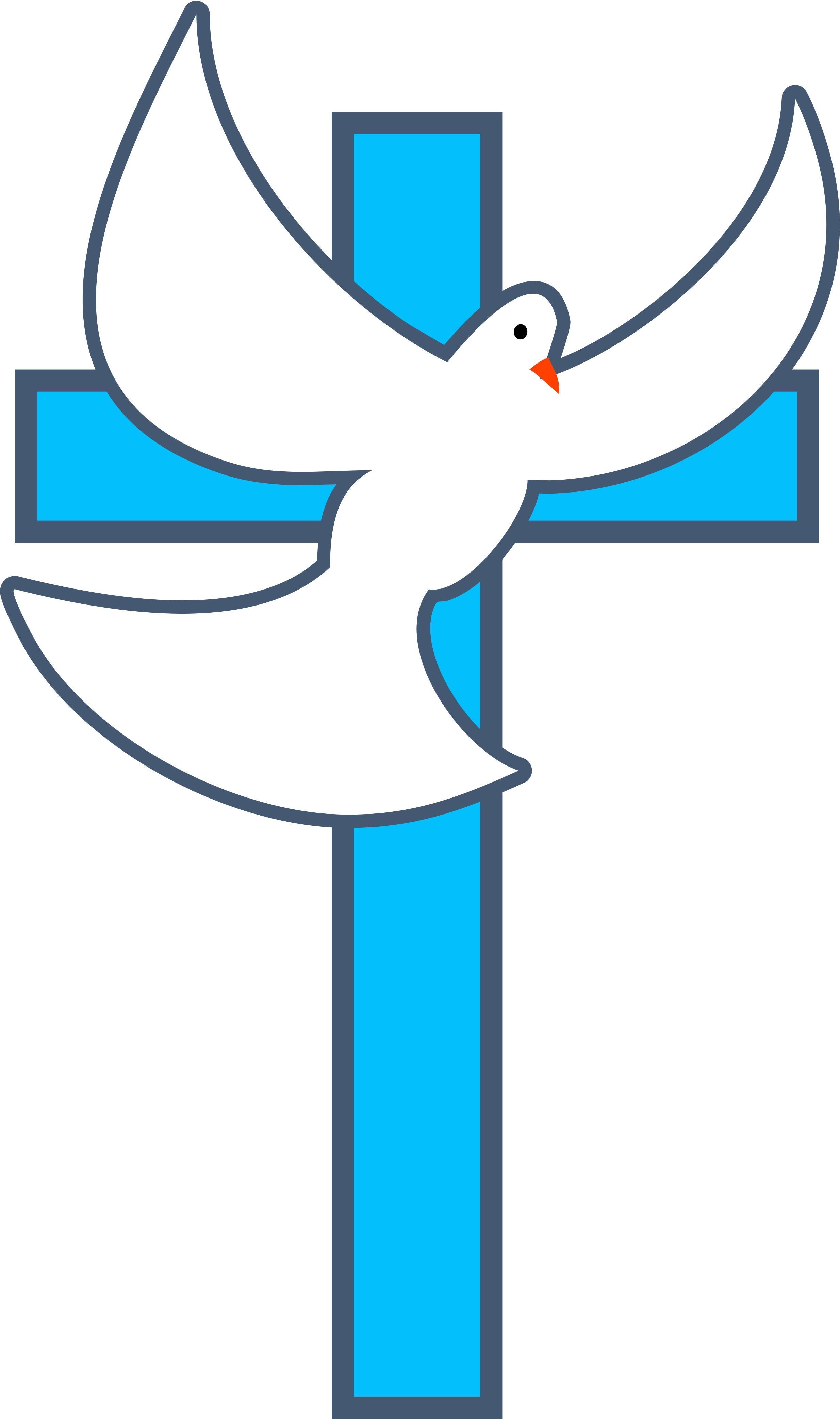 2469x4169 Cross Dove Image