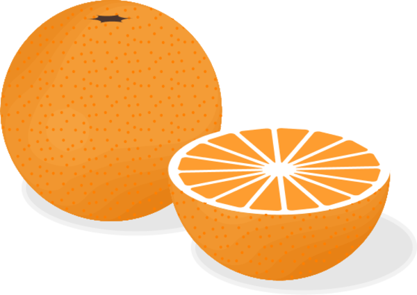 600x425 Orange Fruit Vector Clip Art