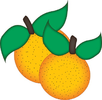 340x336 Oranges Clipart Kid 2