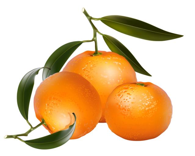 639x514 Oranges Clipart Free