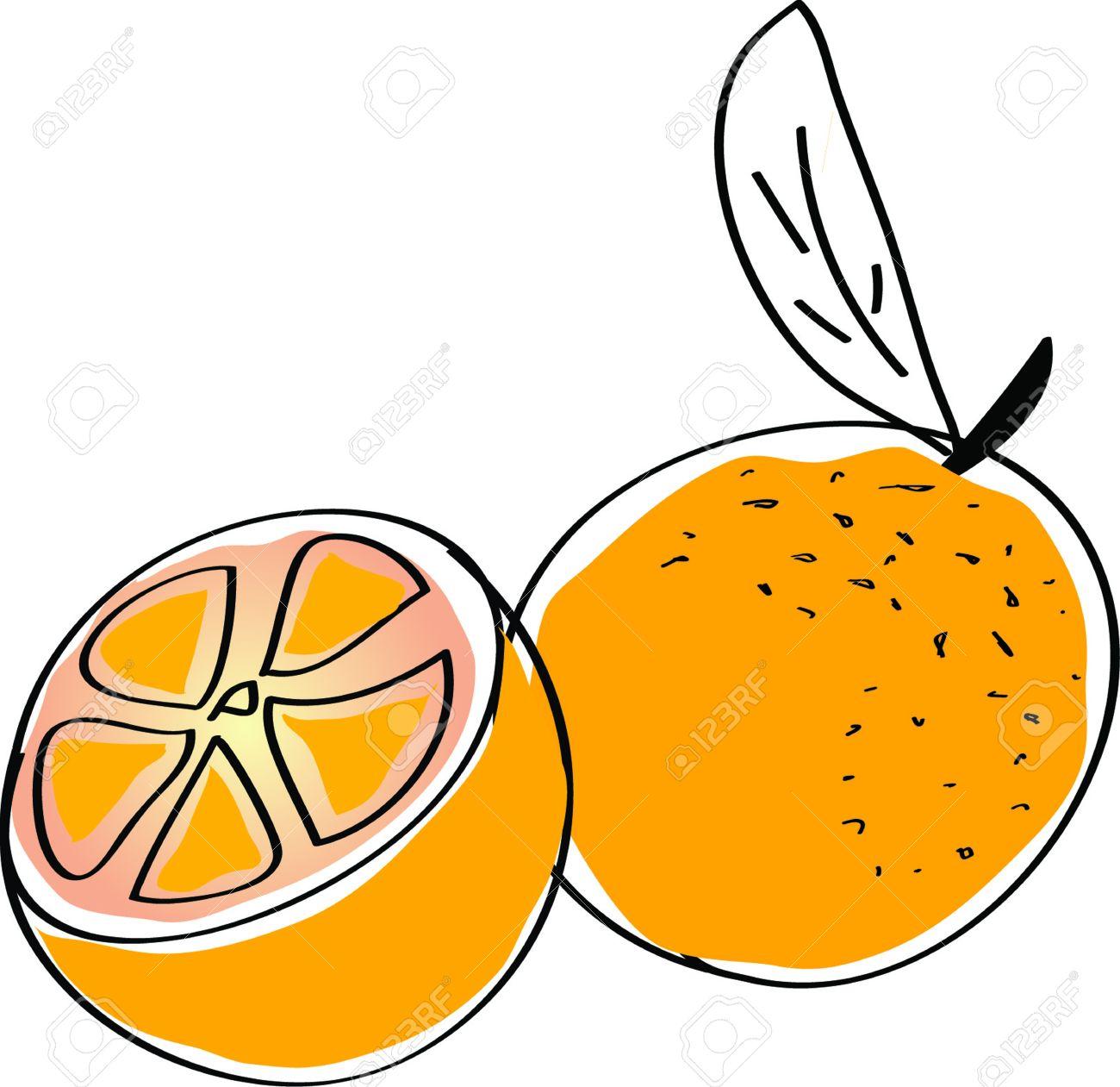 1300x1261 Orange (Fruit) Clipart Lemon