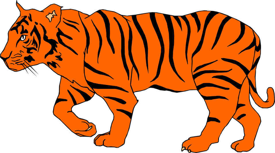 958x533 Orange Tiger Clipart