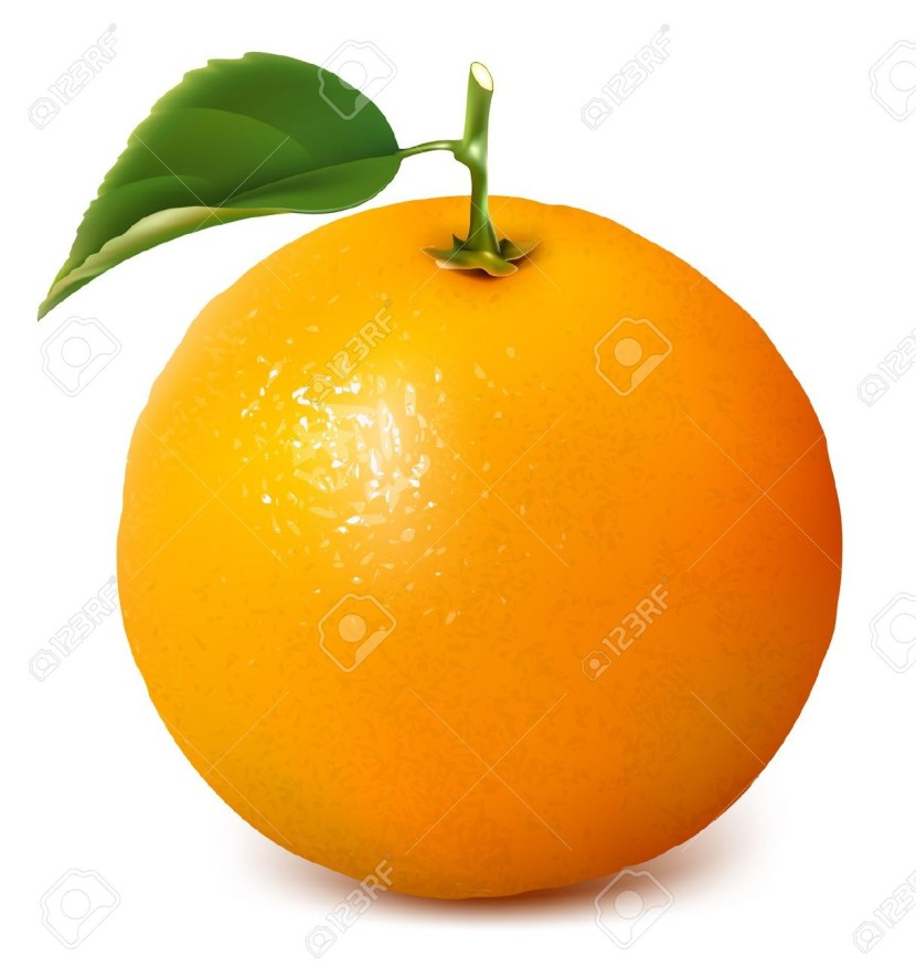 830x886 Orange Clipart Orange Fruit