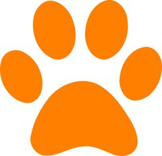 236x228 Color Orange Clip Art