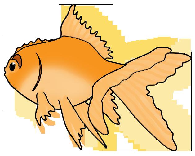 629x503 Fish Clip Art