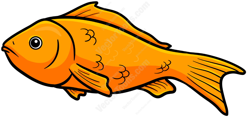 1024x484 Fish Clipart Orange Objects