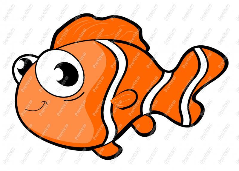 800x573 Free Clip Art Fish