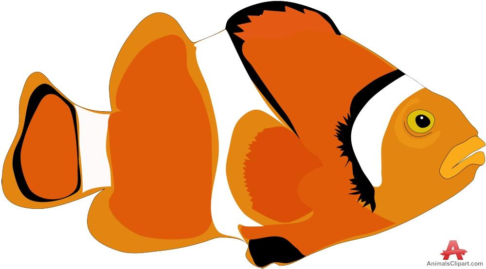 999x554 Beautiful Orange Fish Free Clipart Design Download